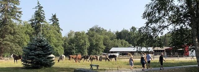 Don's Farm
